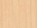 svetly legno